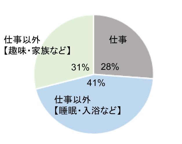 仕事と仕事以外の割合の円グラフ①